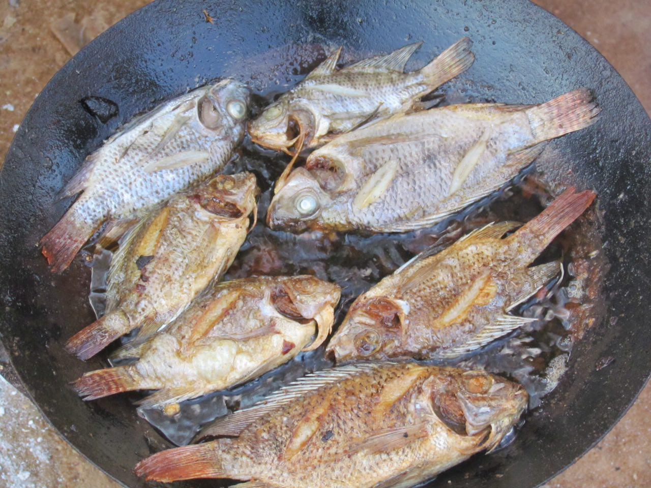 اینها هم ماهی های رودخانه مانامبولو هستند، رودخانه ای که زندگی مردمان این سرزمین به آن گره خورده است، خوشمزه اند، هرچند که به شیوه ای کاملا ابتدایی درست می شوند.