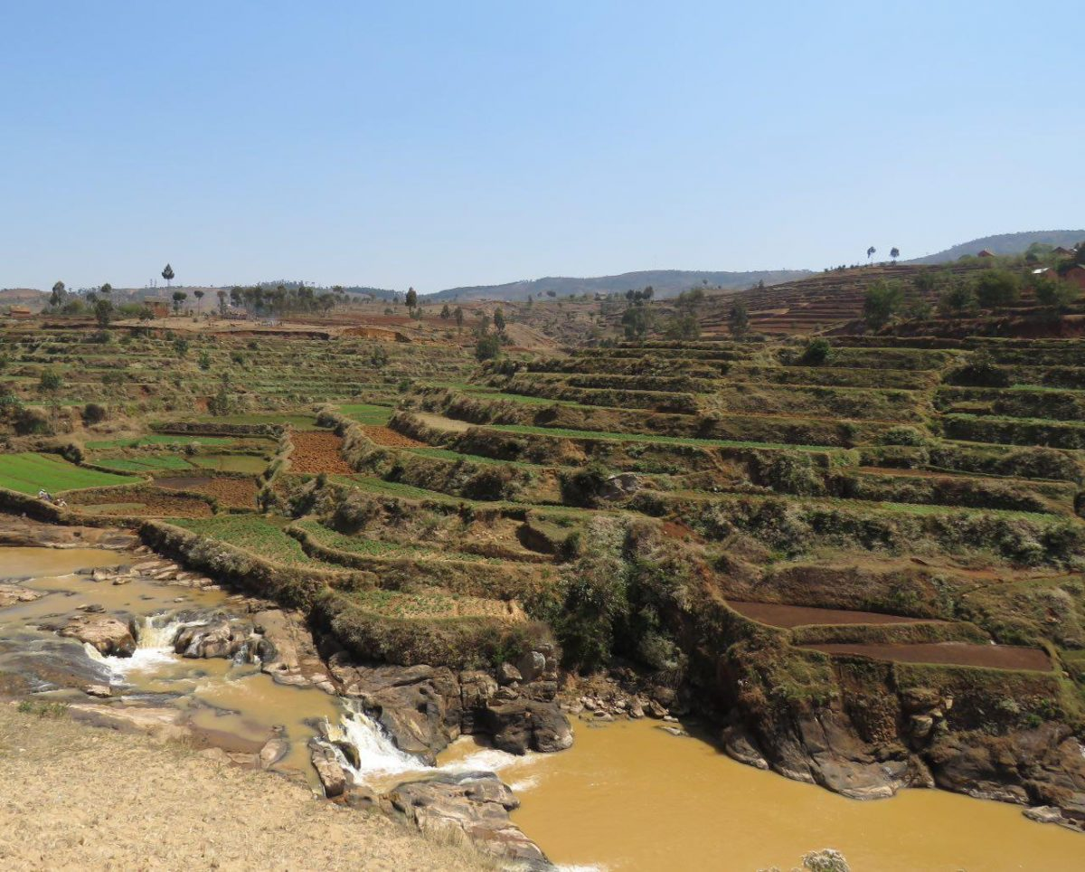 مزارع طبقاتی برنج برای استفاده بهینه آب محدودشان در ماداگاسکار بسیار مرسوم است، حتی آنها نیز یاد گرفته اند که آب را نیکوتر قدر بدانند که منشأ حیات است!
