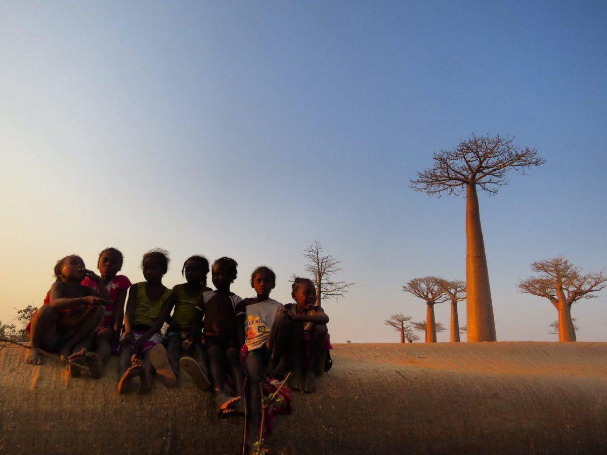 هرگز نشنیده اند قصه بائوباب و شازده کوچولو را، ولی باید خوشحال باشند در سیاره ای زندگی می کنند که ریشه های بائوباب، سیاره شان را از هم نمی پاشد و هر روز می توانند یک دل سیر، غروب آفتاب تماشا کنند!