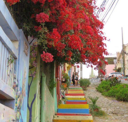 پله ها اینگونه زیبا آغاز می شوند، به راستی چرا ما کمتر از هنر رنگها و همینطور عناصر طبیعی در معماری و شهرسازی مان استفاده می کنیم؟!