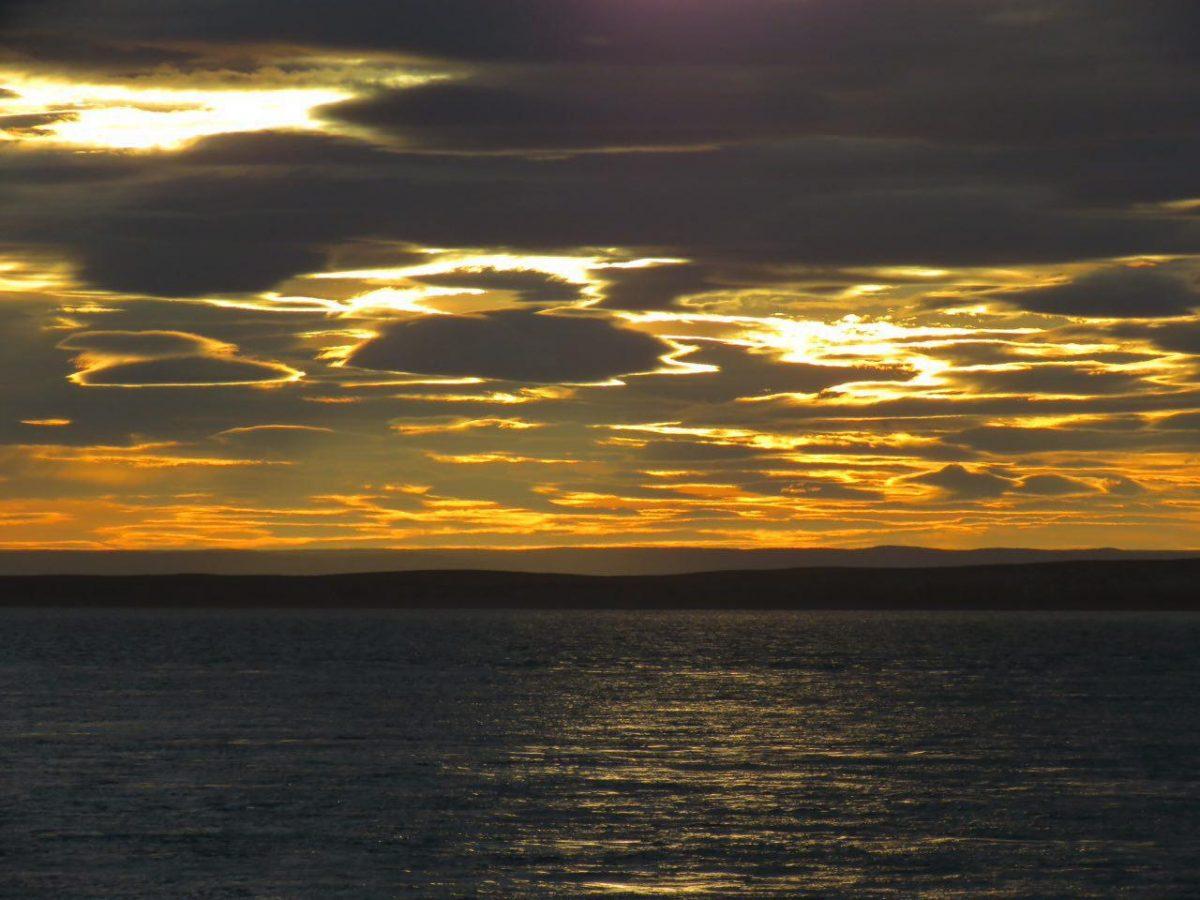 این هم صحنه ای از غروب روی فری در مسیر بازگشت، انگار طرح زده اند ابرها را، جالب است که گاهی دلفین ها و پنگوئن ها هم رخی می دهند و سری از آب بیرون می آورند و دوباره باز می خزند به دنیای خودشان.