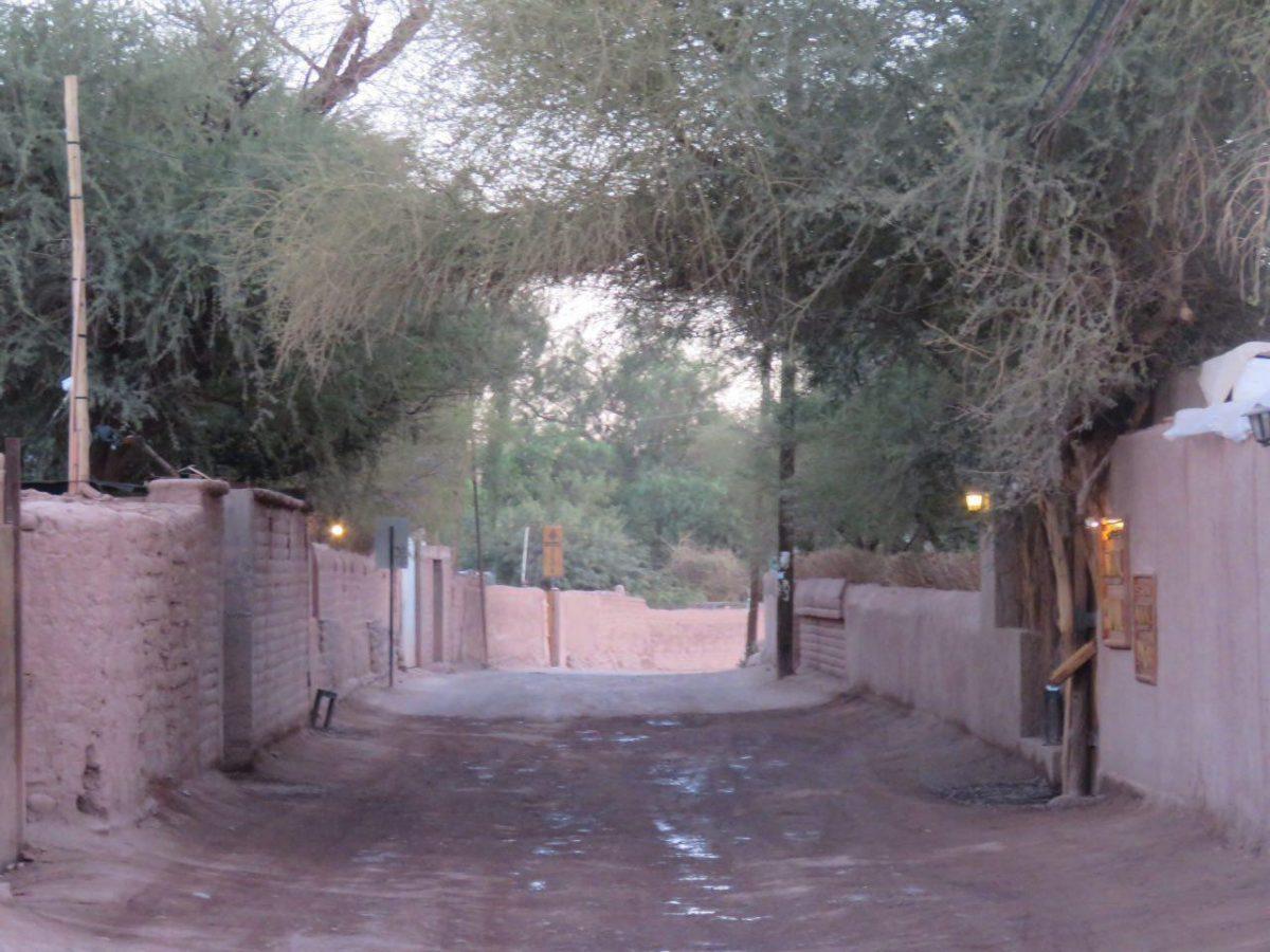 مسیر نه چندان طولانی ترمینال روستا تا مرکزش، دیوارهای گلی و جاده خاکی، بیشتر شبیه کوچه باغ های روستاهای کویری خودمان است انگار