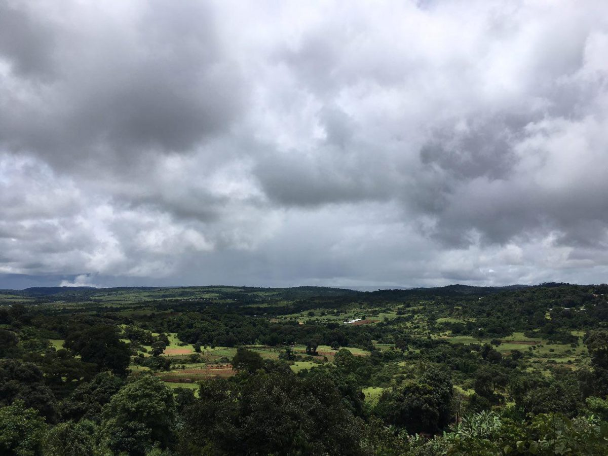 طبیعت سبز و ابرهای تیره در هم می آمیزند و طراوت و تازگی می بخشند...