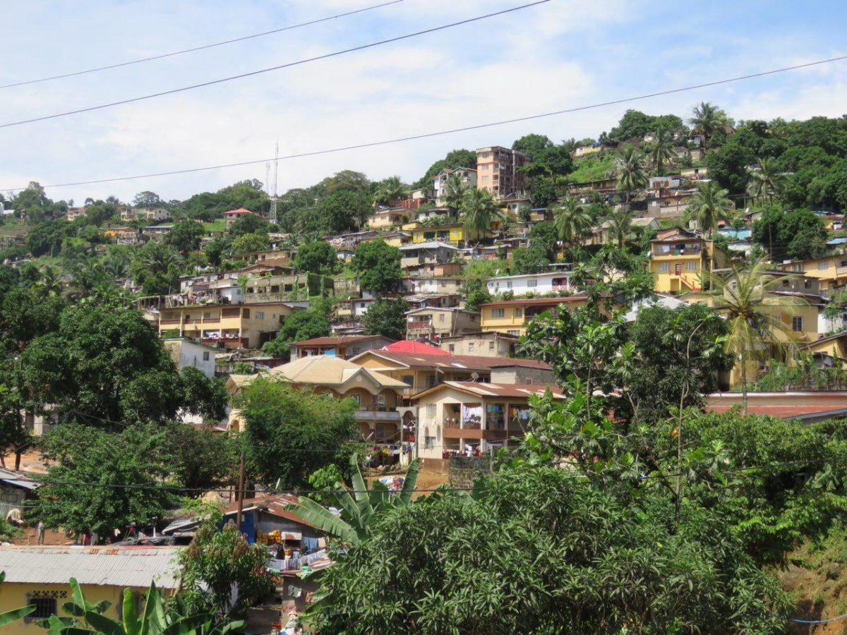 نمایی از روبروی یکی از تپه های شهر فری تون و خانه هایی که جایگزین جنگل شده اند!