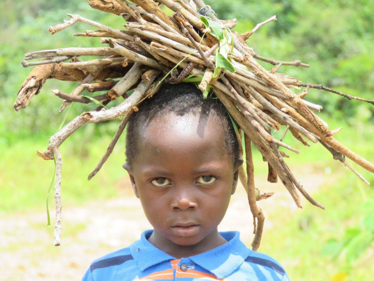 هیزم جمع کرده است از جنگل، قرار است کمک کار مادرش باشد تا بساط آتش اجاق شان را گرمتر کند...