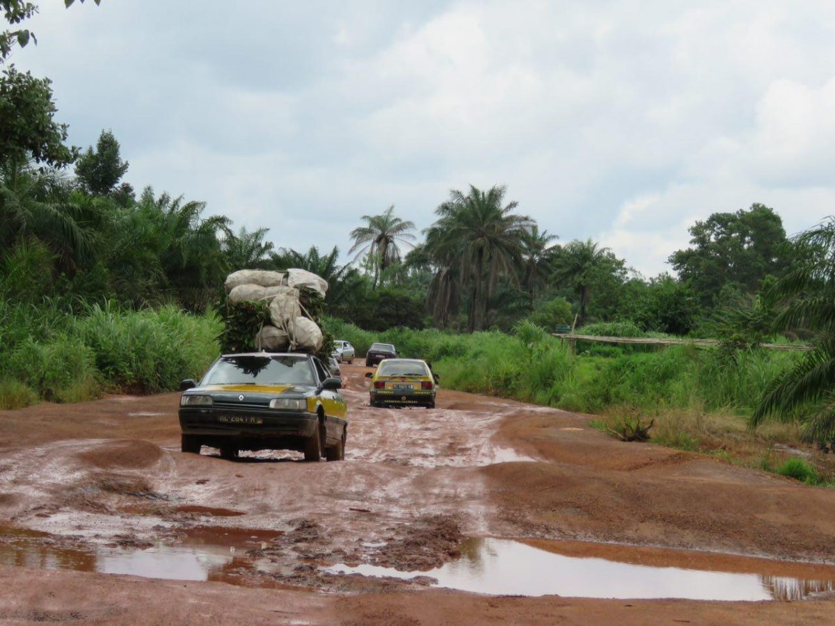 رها در جاده های گینه، به همین سادگی، به همین زیبایی...