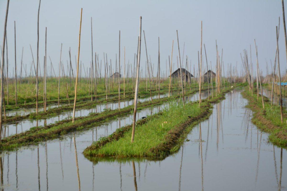 برمه ۲۲