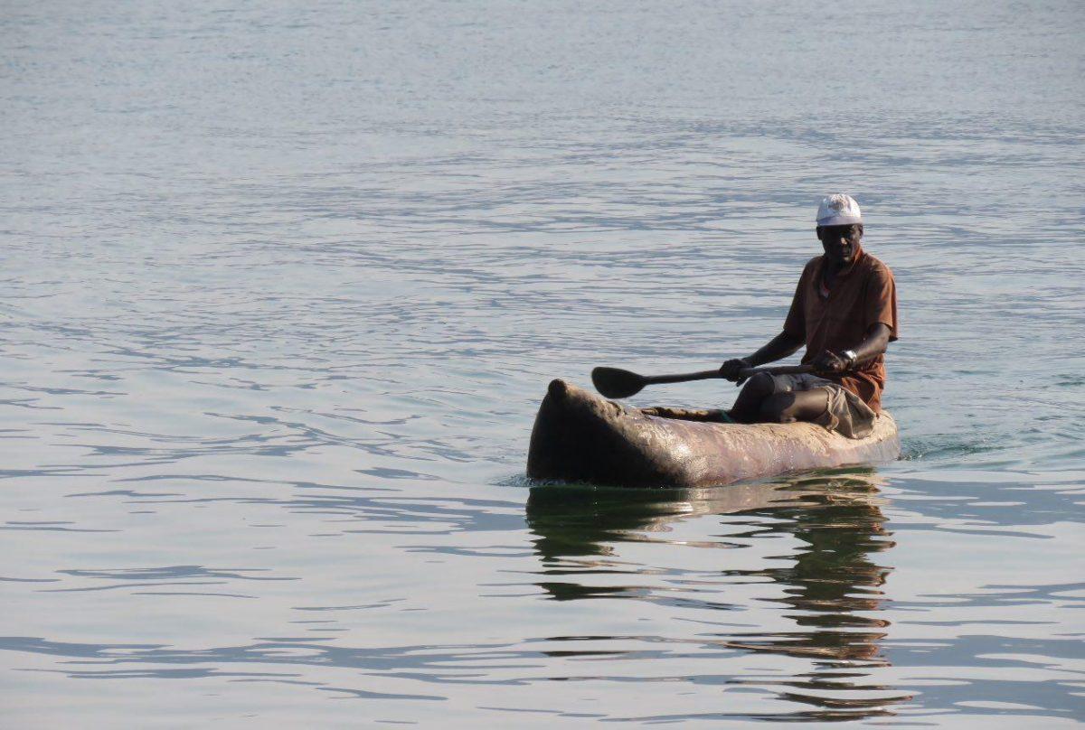 اینجا مردهایشان هم کار می کنند گاهی! صبح های زود و عصرگاهان با کنوهای تراش خورده از تنه تناور درختی به دریاچه می روند و با ماهی برمی گردند، مثل این یکی که با دوتا ماهی نسبتا بزرگ بازگشته است!