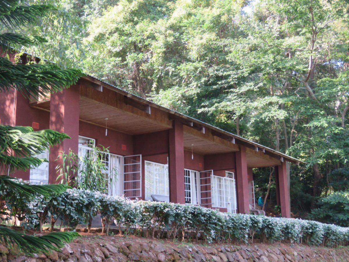 این هم لوج خوش حال و هوای کوهستانی جنگلی ما در دامنه کوهستان و حاشیه پارک جنگلی