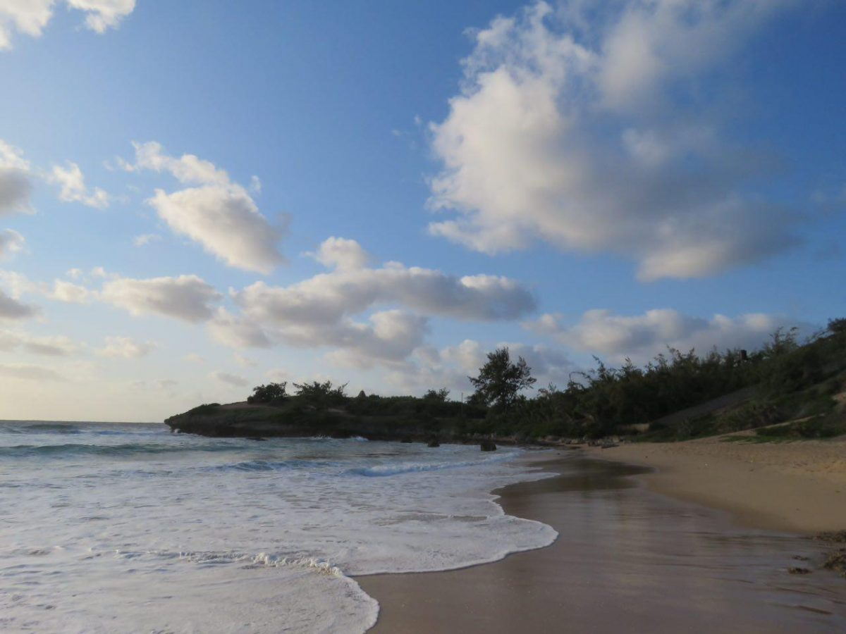 آیینه نگاهت، پیوند صبح و ساحل، لبخند گاه گاهت، صبح ستاره باران...