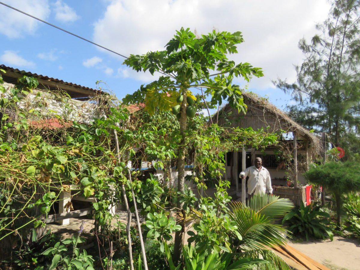 این هم گاه خداحافظی از محل اقامت دوست داشتنی و صاحب مهربانش، البته از انگشت شمار موزامبیکی های خوش اخلاق و آرامی ست که در سفر می بینم!!