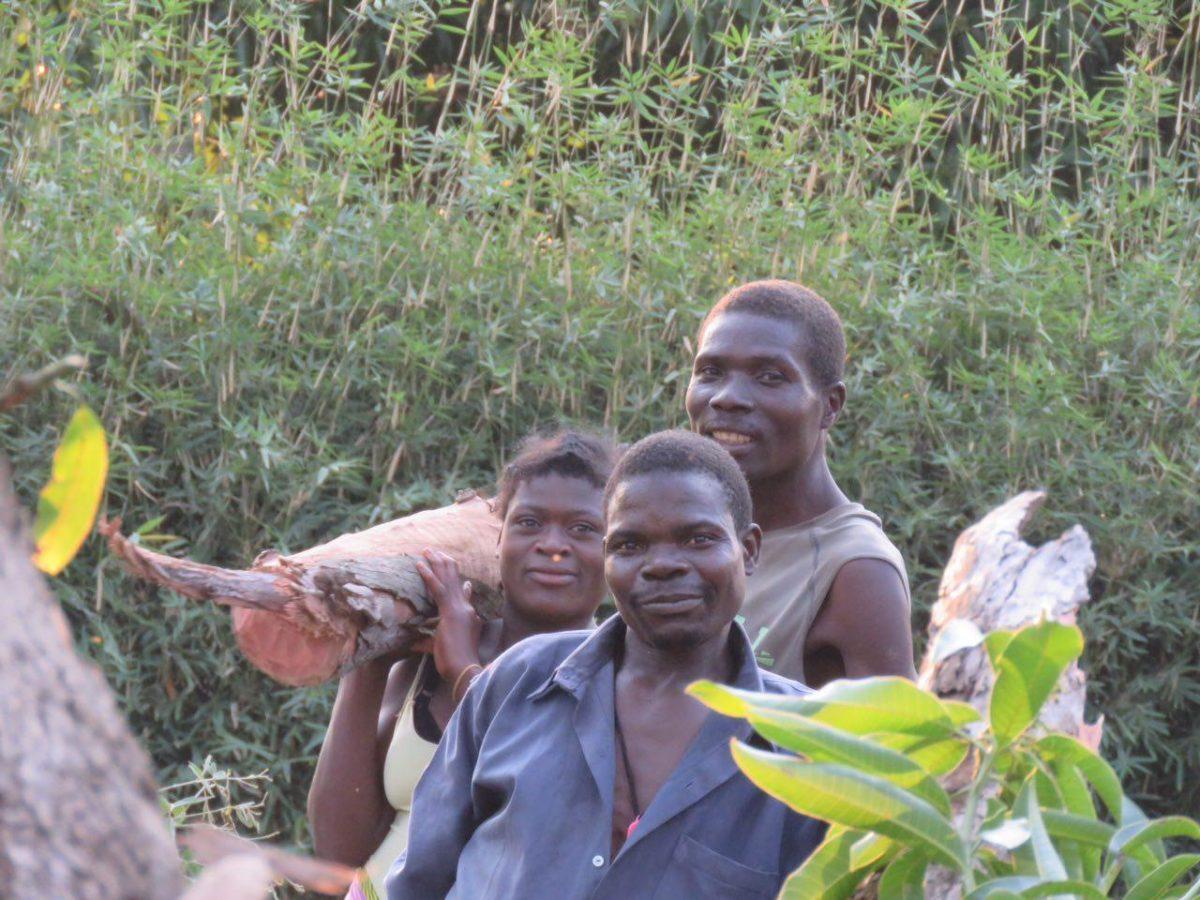 نکته ناامید کننده اش هجوم بی امان به درختان جنگلی و بریدن و سوزاندن آن هاست که البته دلیلی اصلی اش هم فقر بی امان مردمانی ست که هیچ درآمدی ندارند، اتفاقی که در موزامبیک هم به صورت گسترده در جریان است