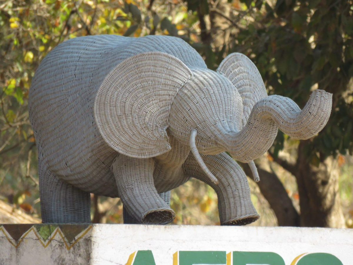 در گوشه و کنار خیابان هایشان گاه، به جای مجسمه انسان های بزرگ، حیوان های بزرگ را جایگزین کرده اند!