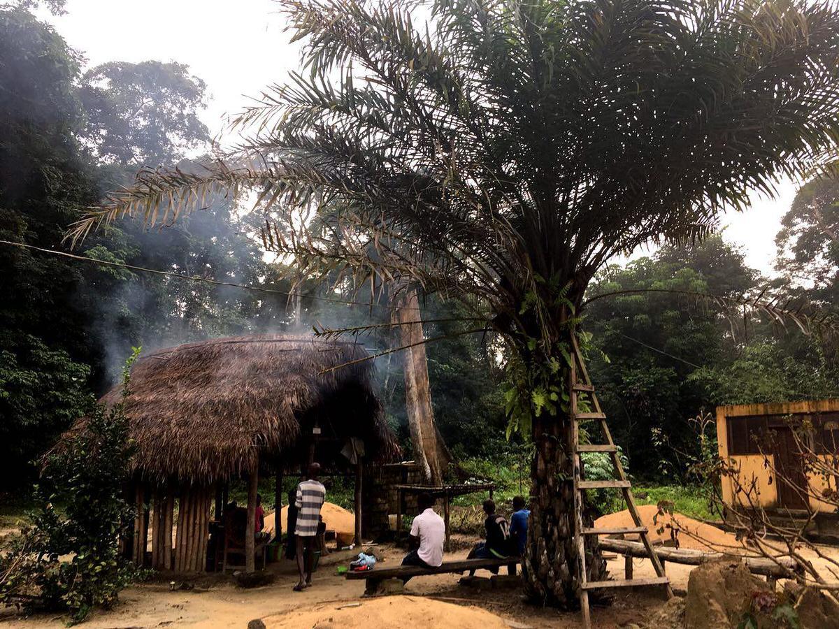 بازمی گردیم به آغوش طبیعت جزیره تیوای، بساط آتش برپاست، غذای شام گاهانشان را مهیا می کنند، لطفی دارد هم نشینی کنار آتش با آنها که حالا دیگر غریبه های دیروز نیستند...